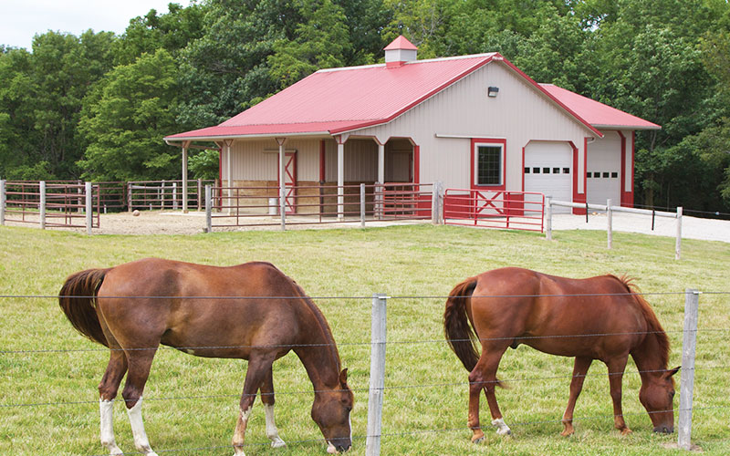 ProLine Horse Barn